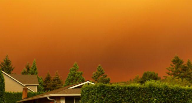 El IRS anuncia alivio tributario para las víctimas de los incendios forestales de Oregón
