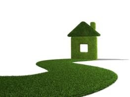 Grass 3D house
