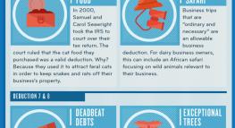 12 Most Bizarre Tax Deductions