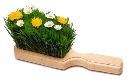 Blooming Swab