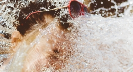 Is My ALS Ice Bucket Challenge Donation Tax Deductible?