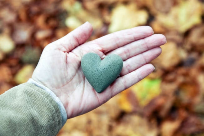 How to Track Your Charitable Contributions