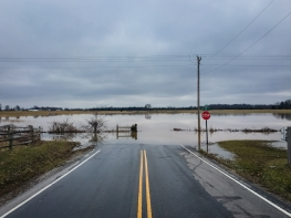 IRS Gives Tax Relief to Victims of Hurricane Harvey and Hurricane Irma
