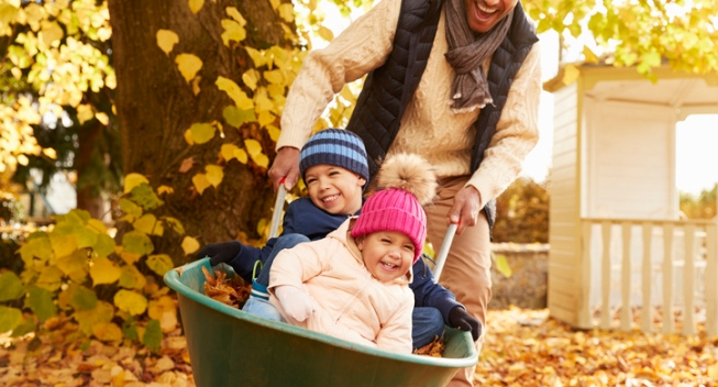 Father In Autumn Garden Gives Children Ride In Wheelbarrow