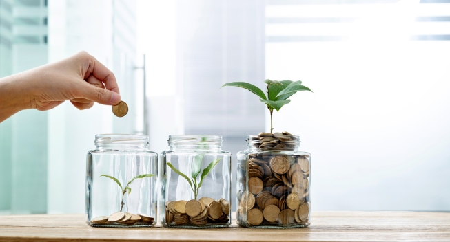 coins-and-plants-jars