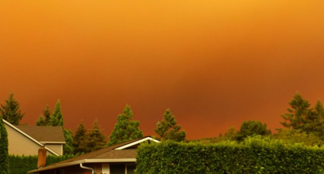 IRS Announces Tax Relief for Victims of Oregon Wildfires